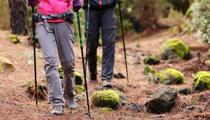 bâtons de randonnée
