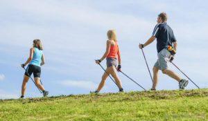 bâtons de marche et de randonnée