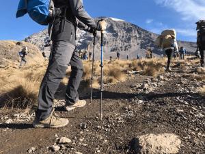 bâtons pour la randonnée