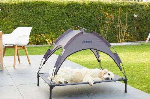 Lit de camp pour chien